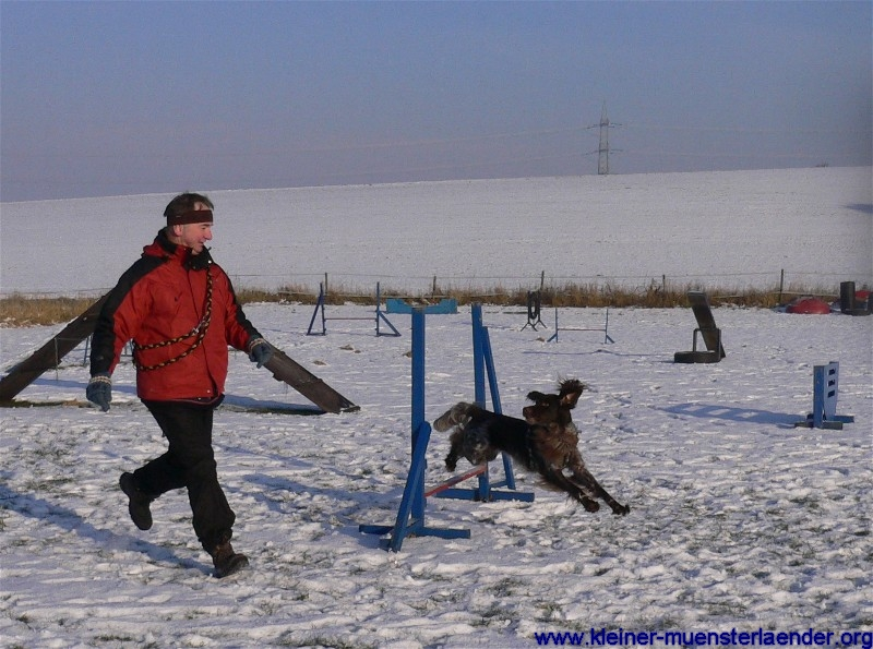 Agility Winter