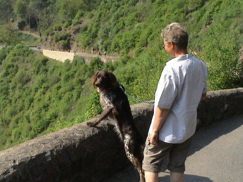 Weg zur Burg Elz
