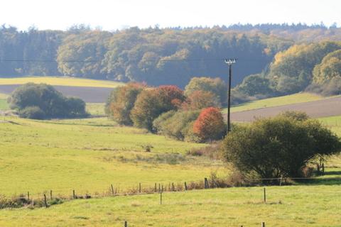 herbstlicher Blick ins Tal
