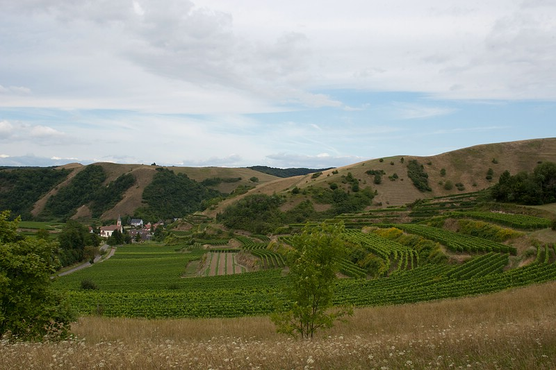 Blick auf Badberg