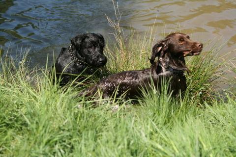 Max und Askan2