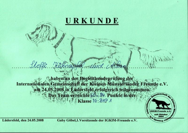Urkunde BHP1 Lüdersfeld 2008