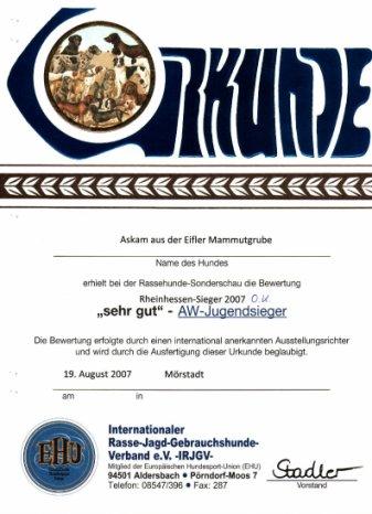 Urkunde Rheinhessen Sieger