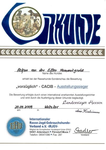 Landessieger Hessen 2009