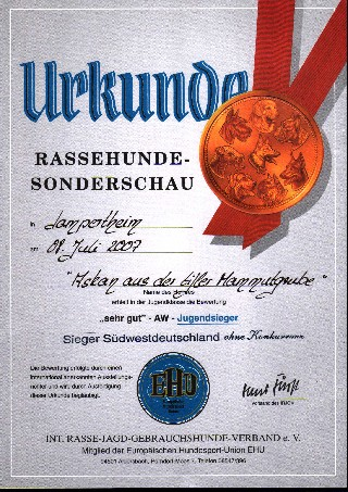 Urkunde Sieger von Südwestdeutschland