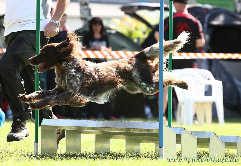 Jumping Open Askan